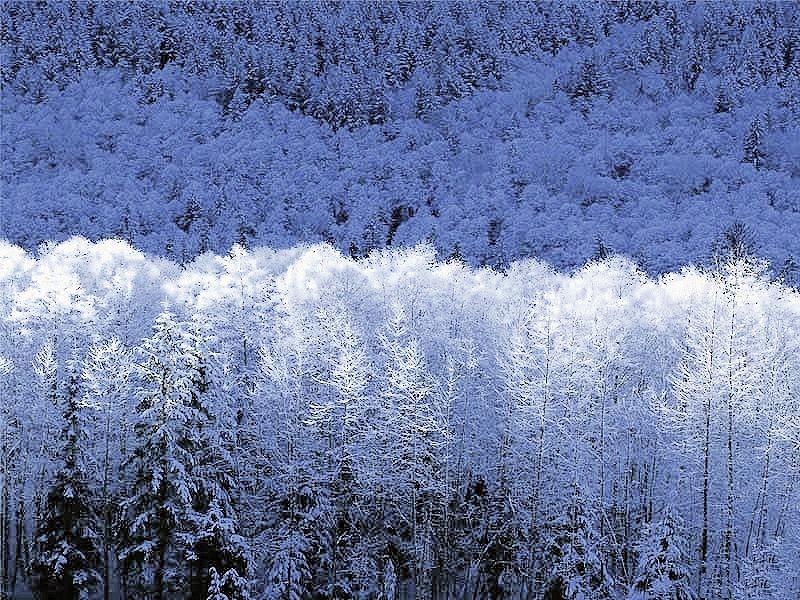 hiverquebec